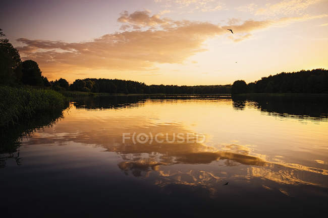 Tranquil, idyllic lake view at sunset, Barnin, Mecklenburg-Vorpommern, Germany — стокове фото