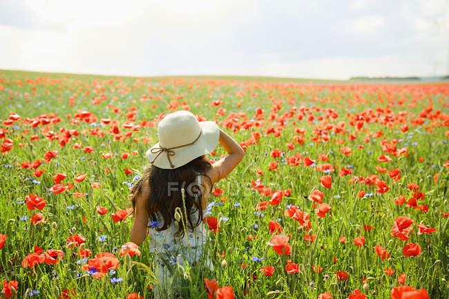Fille marchant dans le champ de pavot rouge ensoleillé et rural — Photo de stock