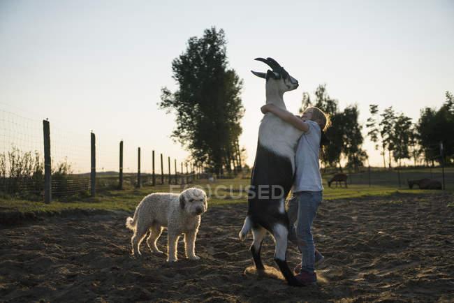 Ragazza che balla con capra in campo rurale — Foto stock