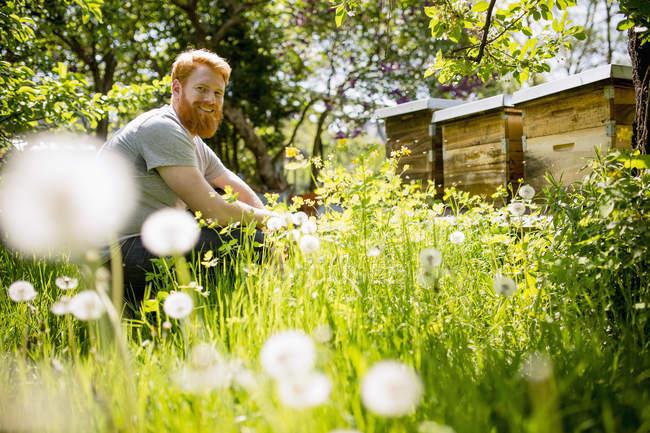 Портрет счастливый человек с бородой садоводства в солнечном саду — стоковое фото