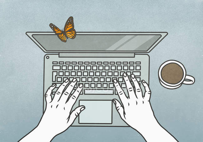 View from above butterfly landing on laptop — стокове фото