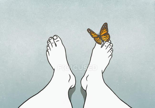 Бабочка приземляется человеку на палец — стоковое фото