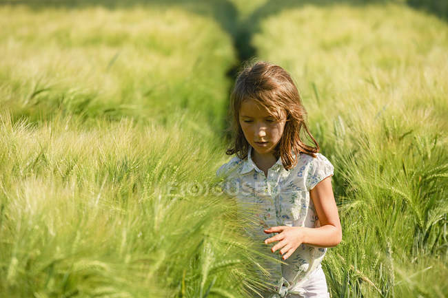 Curious girl walking in sunny, idyllic rural green wheat field — Stock Photo