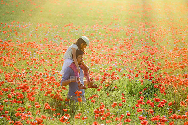 Father carrying daughter on shoulders in sunny idyllic rural field with red poppies — Stock Photo