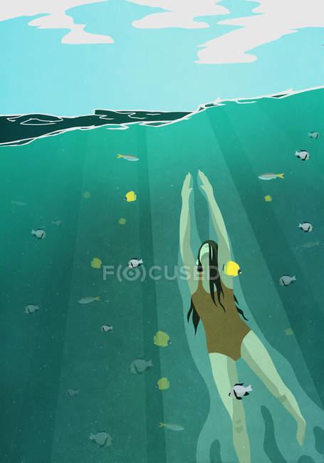 Женщина плавание под водой в океане в окружении рыбы — стоковое фото