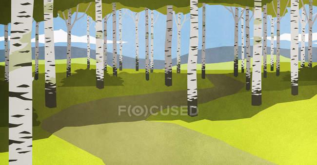 Fußweg durch Bäume im idyllischen Wald — Stockfoto