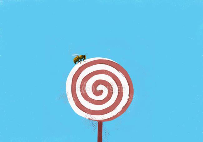 Fly on pinwheel lollipop — Stock Photo