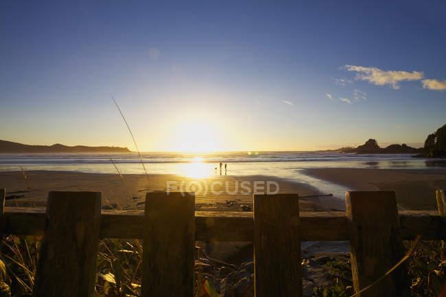 Пара з собакою ходьба на ідилічному океані пляж на заході сонця, Тофіно, Британська Колумбія, Канада, — стокове фото