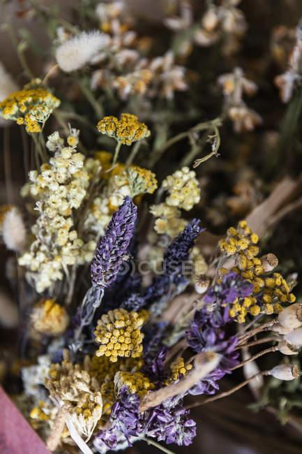 Крупним планом висушених ромашки і лаванди букет — стокове фото
