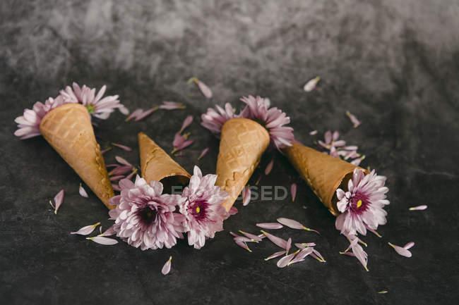 Розовые цветы в конусах мороженого — стоковое фото