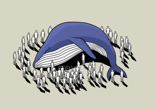 Толпа вокруг выброшенного на берег кита — стоковое фото