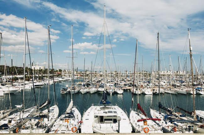 Veleros amarrados en el soleado Puerto Olímpico, Barcelona, España - foto de stock