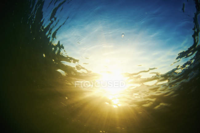 Underwater view tranquil sunshine — Stock Photo