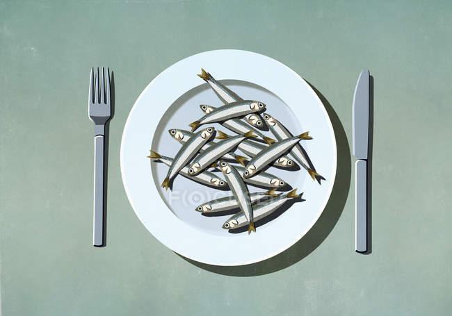 Пучок сардин на тарелке — стоковое фото