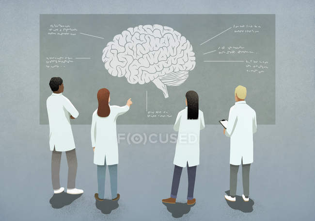 Les scientifiques discutent diagramme du cerveau — Photo de stock