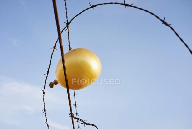 Сдувающийся золотой шар, пойманный в колючую проволоку — стоковое фото