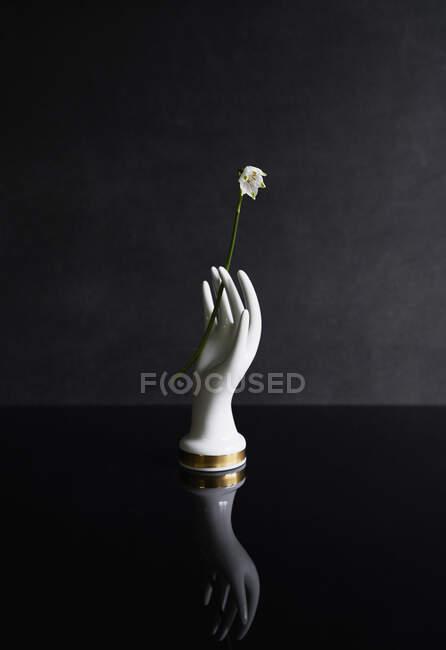 Mano de porcelana sosteniendo flor blanca - foto de stock