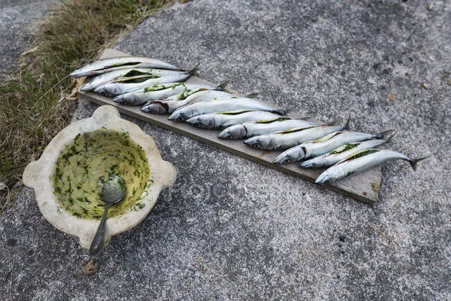 Poisson farci prêt à griller sur planche de bois sur béton — Photo de stock