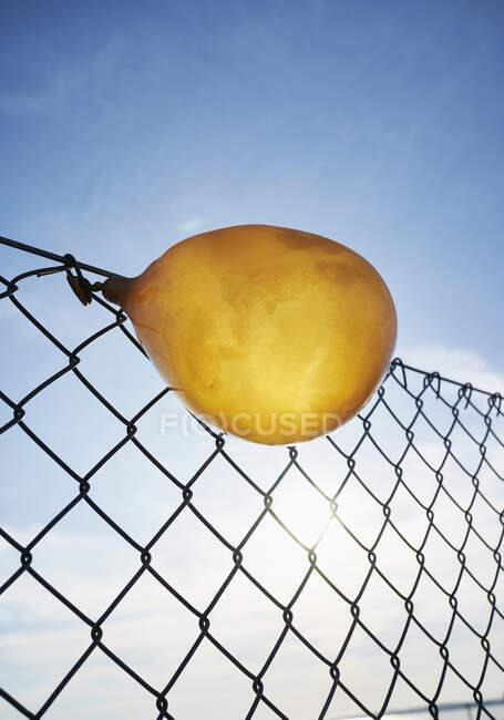 Сдутый жёлтый шарик застрял на заборе цепи — стоковое фото