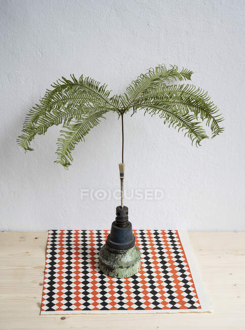 Still life tropical plant in unique vase — Stock Photo