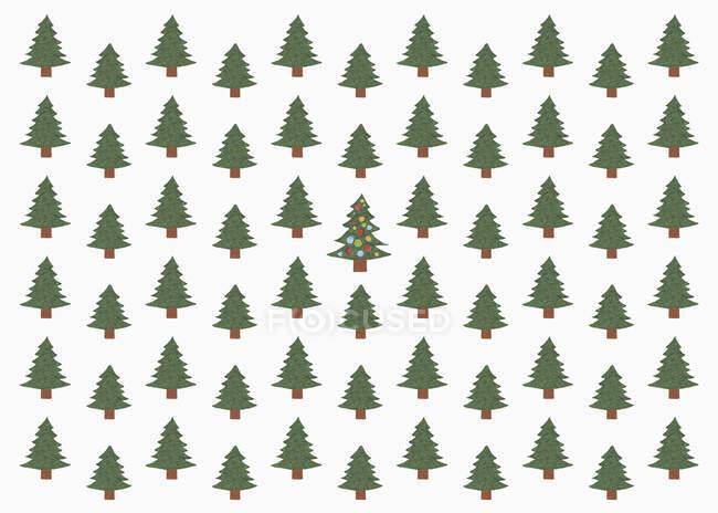 Illustrazione dell'albero di Natale verde nella foresta — Foto stock