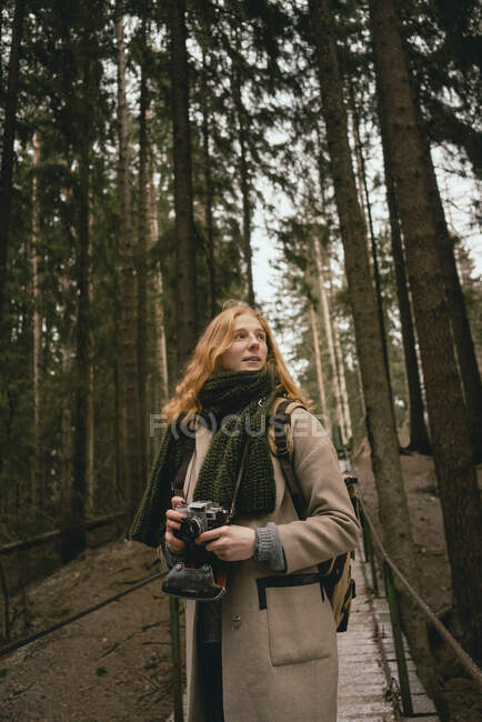Redhead woman with camera on footbridge in woods — Stock Photo