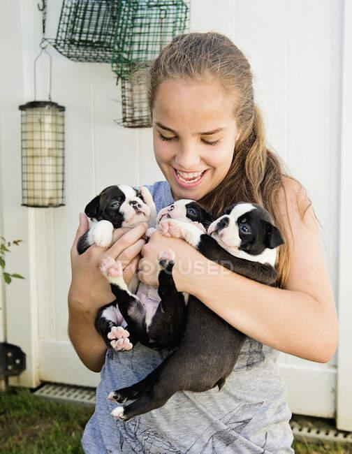 Девочка-подросток держит щенков бостонского терьера — стоковое фото
