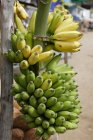 Перегляд булочки бананів і кокоси на відкритому повітрі на Маркет-стріт денний час — стокове фото