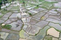 Аэрофотосъемка сельскохозяйственных угодий погружен в воду после наводнений 26 июля 2005 года, что качались Мумбаи и его прилегающих частей в Раигад — стоковое фото