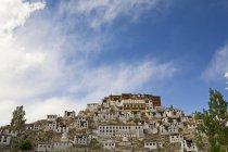 Вигляд спереду вражаючі буддійські монастиря Тіксе монастиря з білим ченці кварталів і Лавандово & червоний пофарбовані храм комплексу. Ladakh.India — стокове фото
