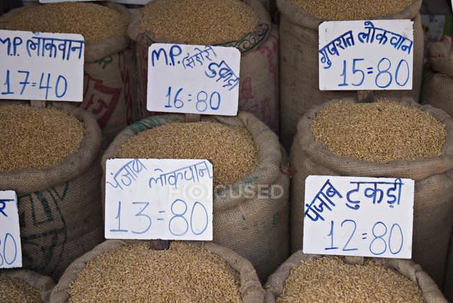 Diferentes tipo de grano de trigo - foto de stock