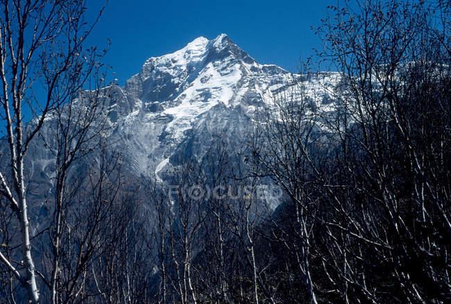 Niedrigen Winkel Ansicht der Berge Gipfel mit Bäumen zu Fuß während des Tages — Stockfoto