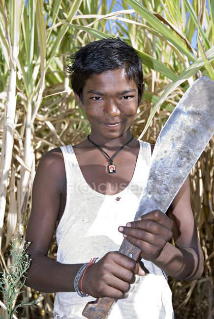 Індійських фермерів з ножем на полі. Salunkwadi, Taluka, Ambejpgai район, Beed, штаті Махараштра, Індія — стокове фото