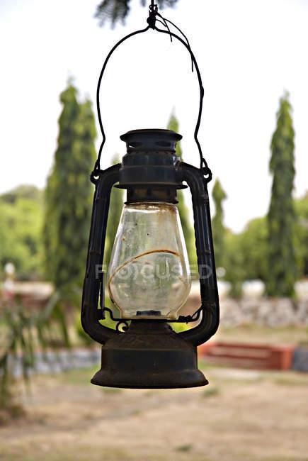 Lanterne suspendue à l'arbre — Photo de stock