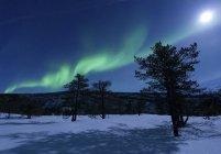 Северное сияние в Трумсё — стоковое фото