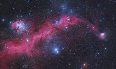 Starscape con Nebulosa Gabbiano — Foto stock