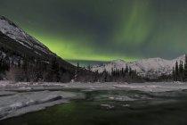 Aurora borealis au-dessus du lac Annie — Photo de stock