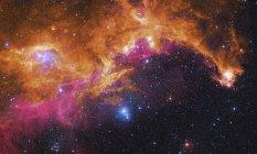 Paesaggio stellato con nebulosa gabbiano — Foto stock