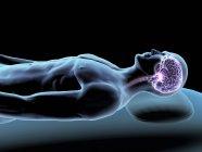 X-ray illustration of sleeping man with brain — Stock Photo