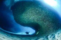 Mergulhador nadando ao redor de uma grande massa rochosa em uma caverna aberta na costa leste da Sardenha, Itália — Fotografia de Stock