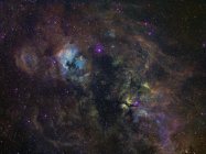 Widefield изображение узкополосных эмиссии в лебедя — стоковое фото
