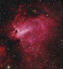 Messier 17 Swan Nebula in Sagittario — Foto stock