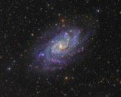Шаровое скопление 33 треугольника Галактика в созвездии треугольник в высоком разрешении — стоковое фото