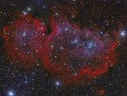 Сердце туманность в созвездии Кассиопея с высоким разрешением — стоковое фото