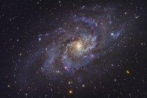Треугольника галактики Ngc 598 в созвездии треугольник — стоковое фото