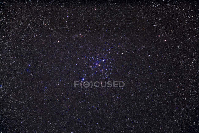 Starscape with open star cluster below Sirius — Stock Photo