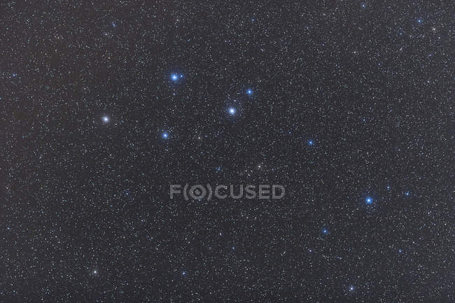 Starscape with Delphinus constellation — Stock Photo
