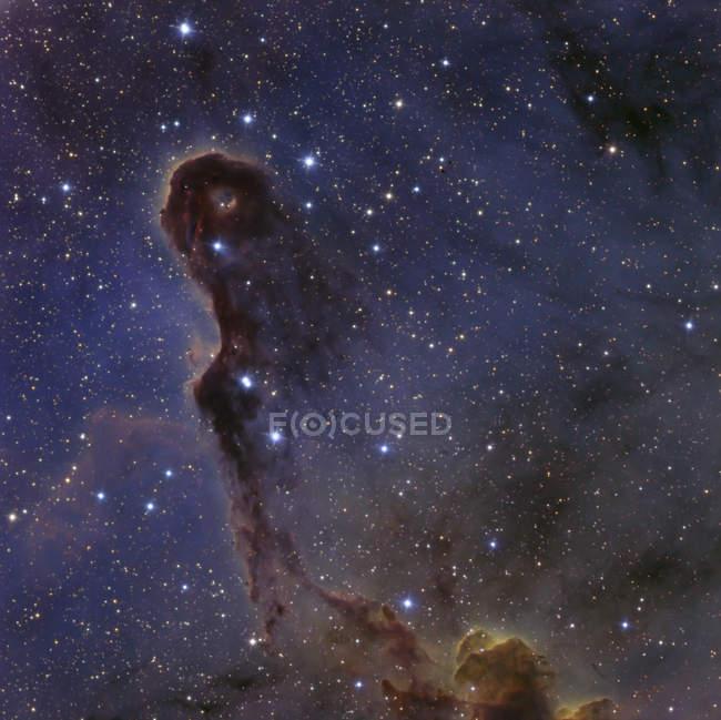 Nebulosa del tronco del elefante en la constelación de Cefeo - foto de stock