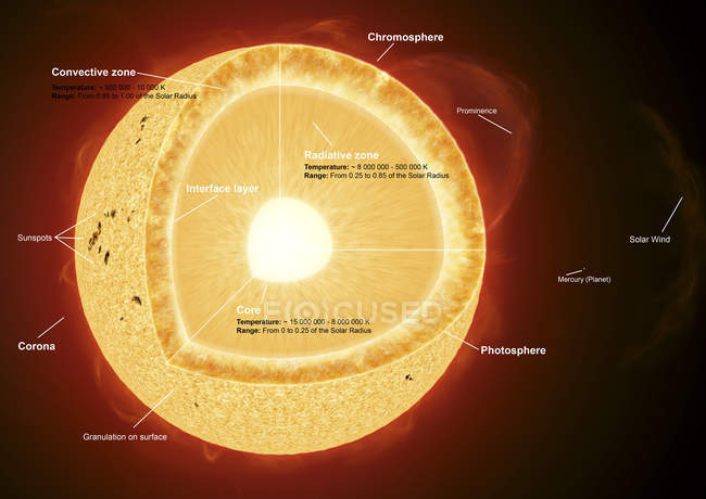Parts of the sun with labels — Stock Photo