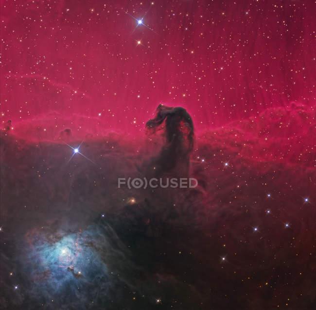 Paisaje estrellado con nebulosa Cabeza de Caballo - foto de stock
